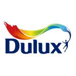 Dulux в Нижнем Новгороде